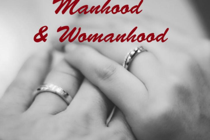 biblical manhood and womanhood series